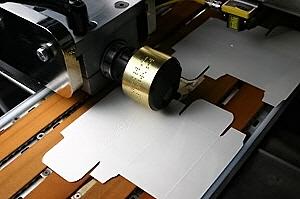 90846-roberts-braille-press-release
