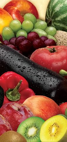 fresh cut vegetables business plan