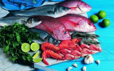 130612-Fish02 W540 100dpi