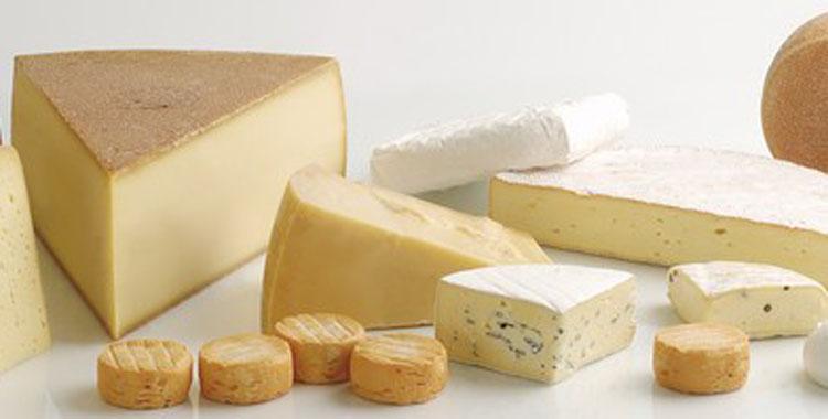 140551-Cheese capa 750x380 72dpi