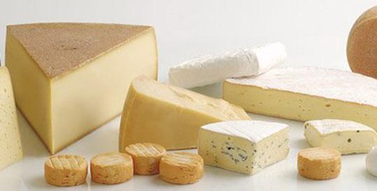 140551-Cheese capa W540 100dpi
