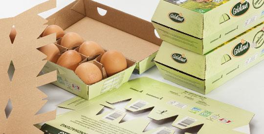 140837-2014_05311 eggbox 10er Hofer Goldland02 W540 100dpi