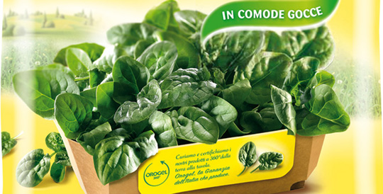 In packaging indoor gardening best in packaging for Indoor gardening meaning