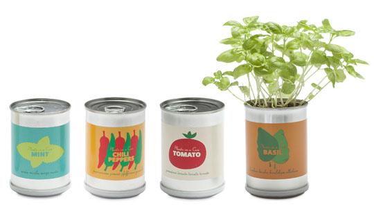150193-micro-giardini-c2a38-99-each-min-chilli-peppers-tomatoes-and-basil-W540 100dpi