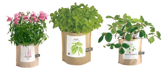 In-Packaging Indoor Gardening | Best In Packaging