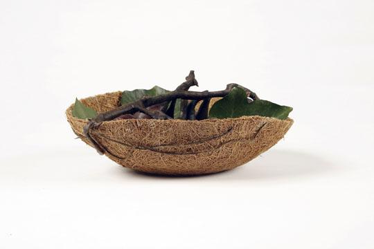 150278-Living Fruit Basket04-W540 100dpi