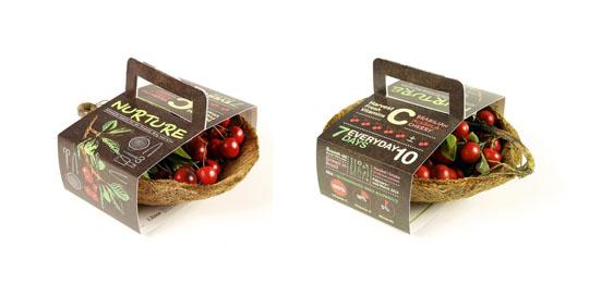 150278-Living Fruit Basket05-W540 100dpi