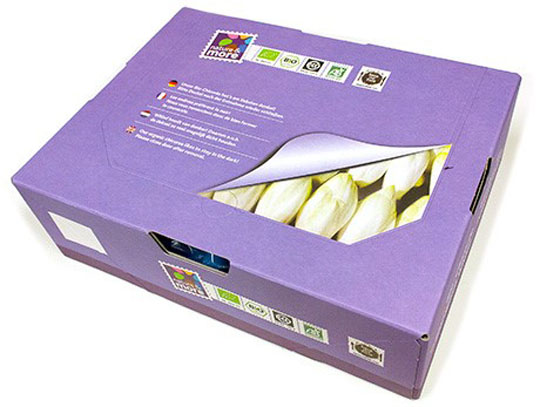 150327-Resealable Belgian endive box to improve shelf life eosta-W540 100dpi