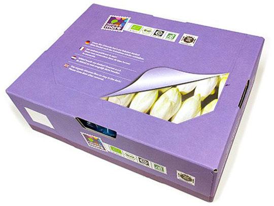 150327-Resealable Belgian endive box to improve shelf life eosta-W540 100dpi