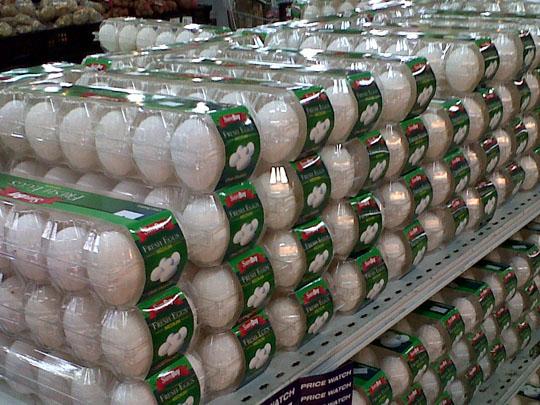 150220-Plastic egg packaging-W540 100dpi