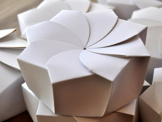 150234-The Origami Food Box, designed by Michealle Lee for Guactruck in Manila, Philippines W540 100dpi