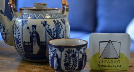160230-Spotless Teabag DSC_5820 W540 100dpi