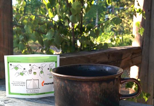 160230 spotless teabag img 20150621 w540 100dpi - تحولات در بسته بندی انعطاف پذیر